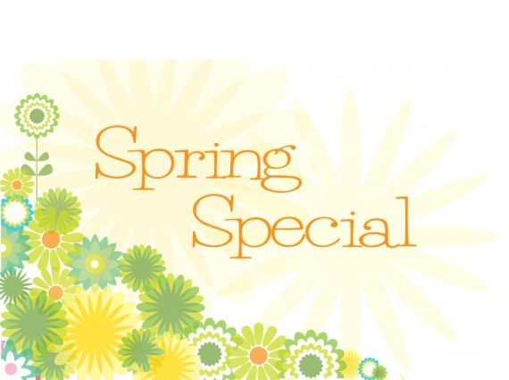 https://thirides.com/wordpress/wp-content/uploads/2016/02/Spring_Special_2012_570x425_white.png